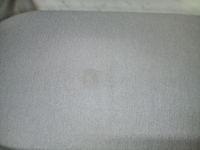humei-shimi 3.JPG